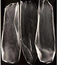 "Lauren Sudbrink; Residual Index III; Gelatin Silver Print; 15"" x 19""; Starting Bid $400.00"