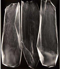 "Lauren Sudbrink; Residual Index III; Gelatin Silver Print; 15"" x 19""; Starting Bid $400.00"